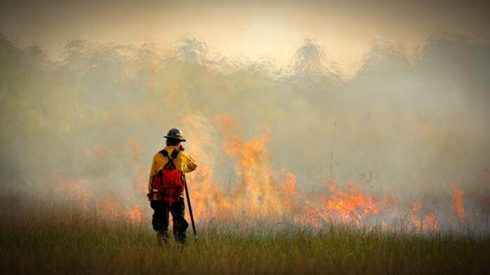 Napa County Wildfires