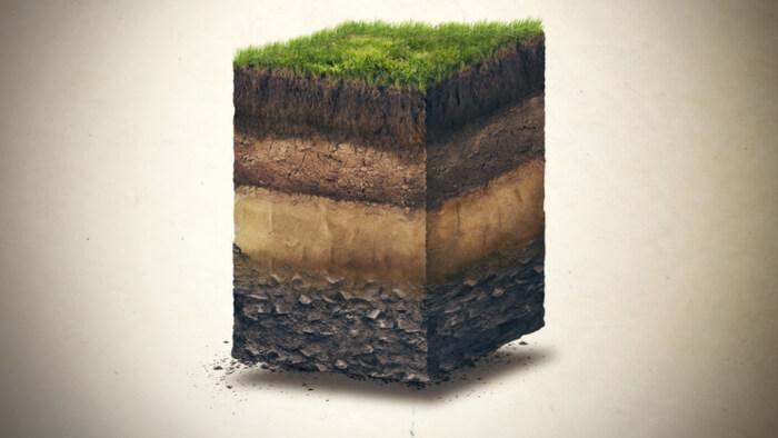 carbon sequestration in soil