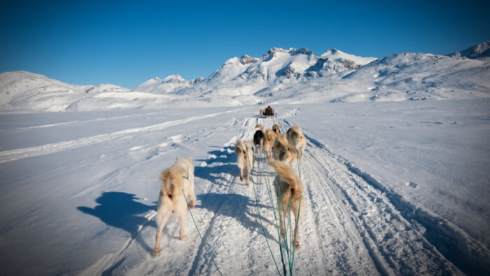 How is Climate Change Changing Life in the Arctic? Giving Compass