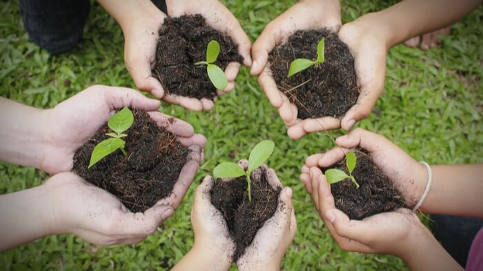 The Power of Community Supported Agriculture-giving compass