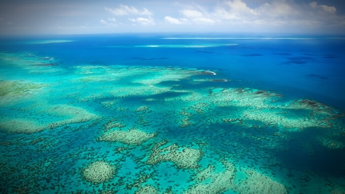Great-Barrier-Reef destruction