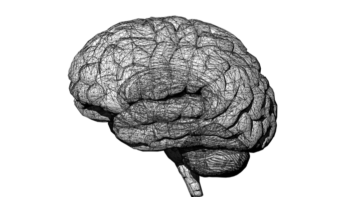 White Brain Top View Men/'s Tee Image by Shutterstock