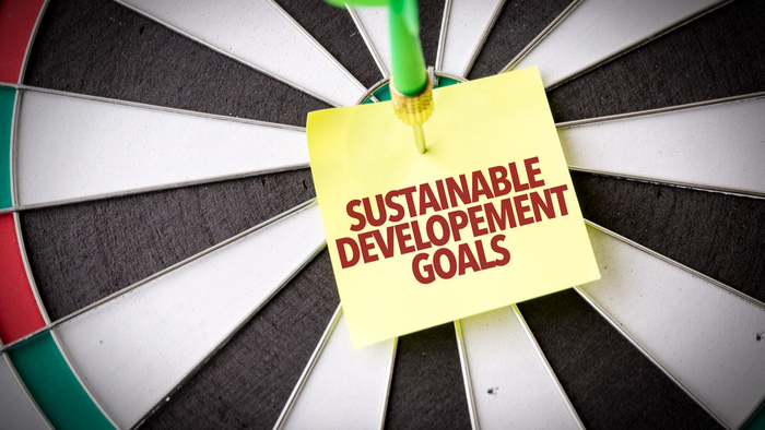 New-era-of-SDG-alliances
