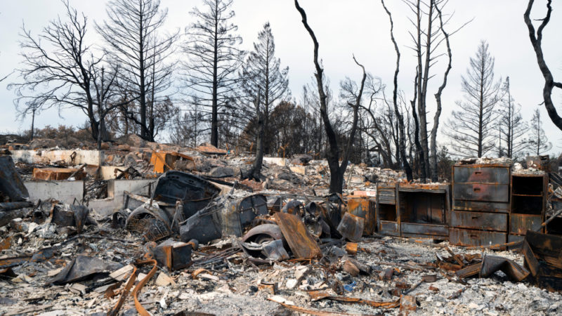 What Wildfires Do to Our Minds Giving Compass