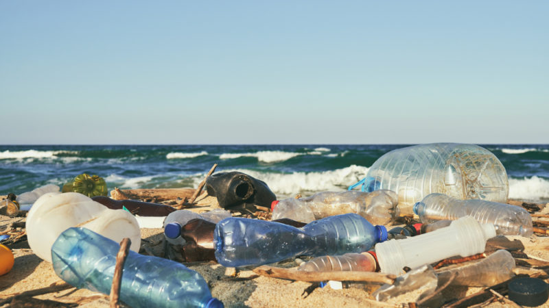 The Fight Against Ocean Plastic Pollution Giving Compass