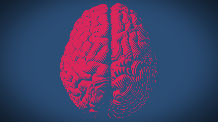 Top Ten Myths About the Brain Giving Compass