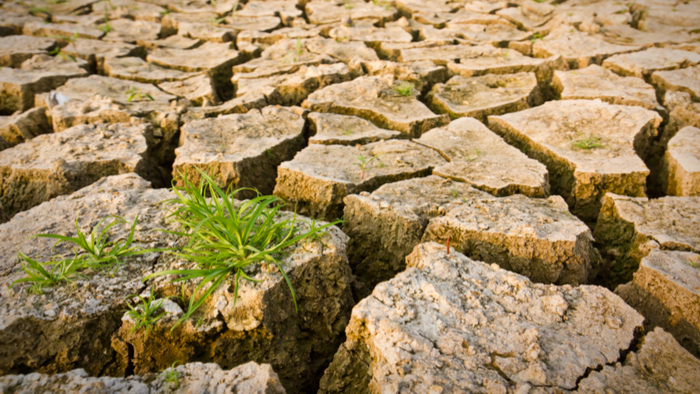 How We Can Overcome the Challenges of Fighting Climate Change Giving Compass
