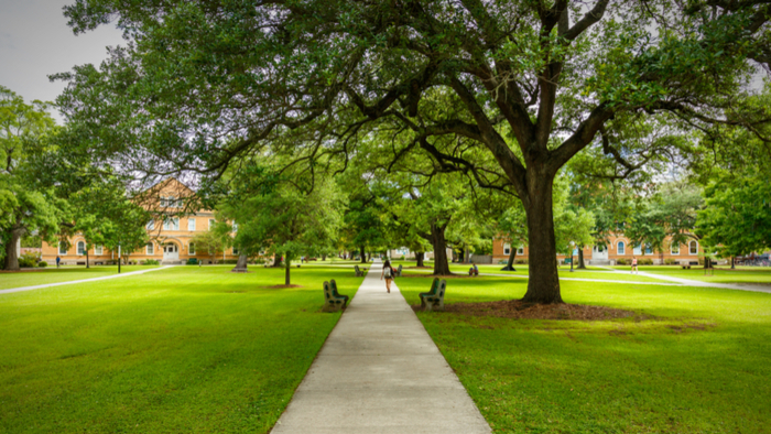 Higher Education Trends to Watch in 2019 Giving Compass