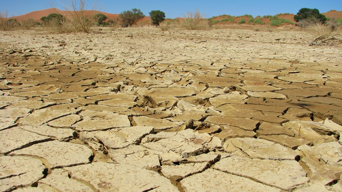 Heatwave Threatens Zimbabwe's Harvest Amid Severe Drought