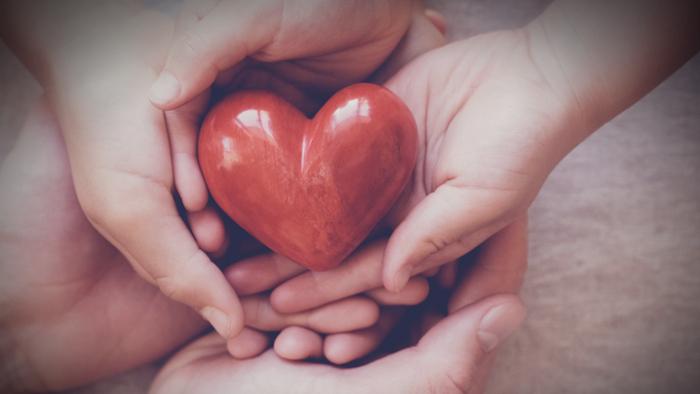 How Do You Create A Family Foundation? Giving Compass