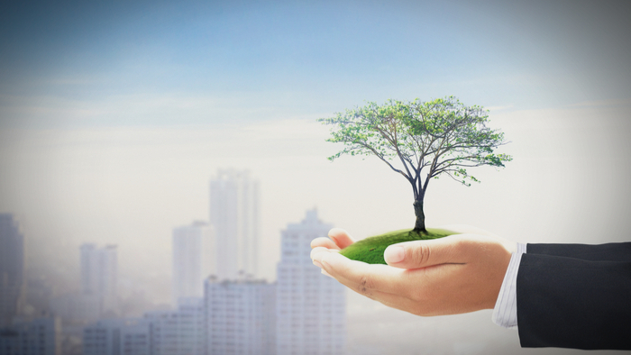 The Philanthropy World Is Embracing Impact Investing Giving Compass