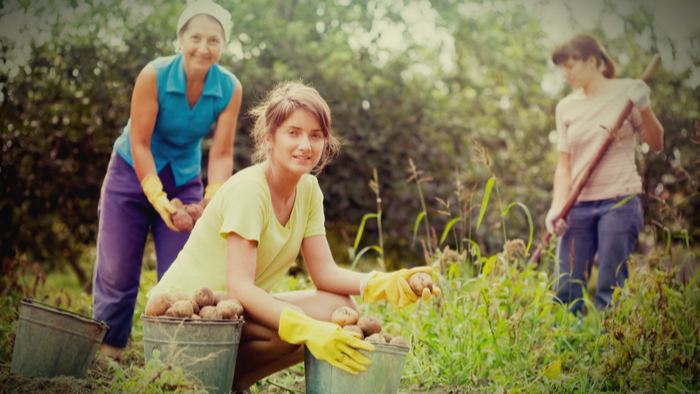 Women Farmers Own Half the Farmland in America But Don't Earn Half the Profits Giving Compass