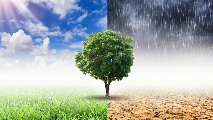 Both Sides of the Question on Climate Crisis Philanthropy