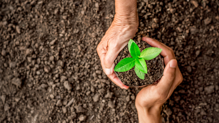 Learnings about Environmental Philanthropy