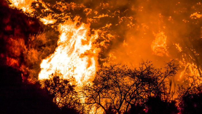 California's Largest Utility Resorts to Blackouts to Prevent Wildfires