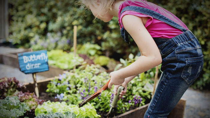 Investing in Garden-Based Learning in Public School Education Giving Compass