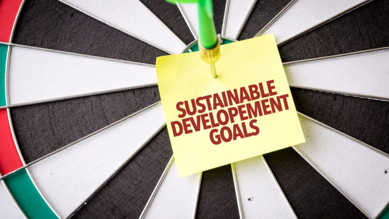 Only 10 Years Left Until the SDG Deadline Giving Compass