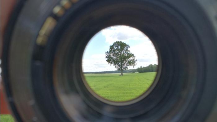 Systems Change Through a Trauma Lens