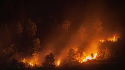 How to Make an Impact: Kincade Fire and Other Northern California Fires Giving Compass