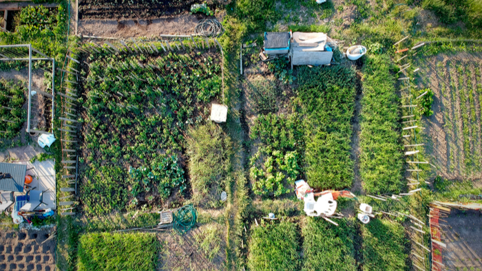 Food System Investment Opportunities