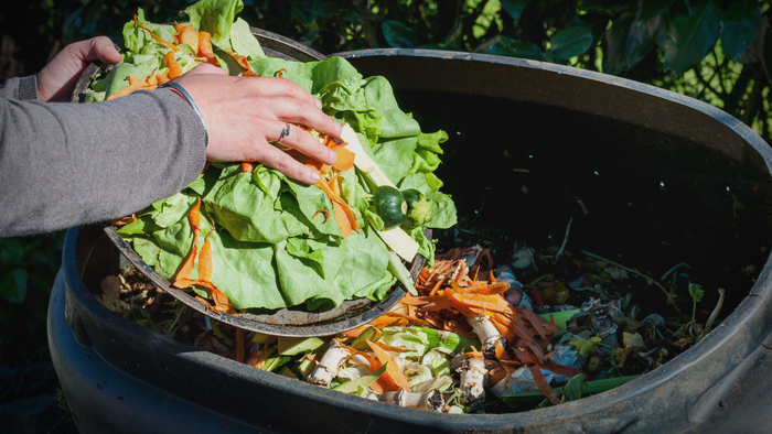 See How This Food Waste Job Training Program is Making an Impact Giving Compass