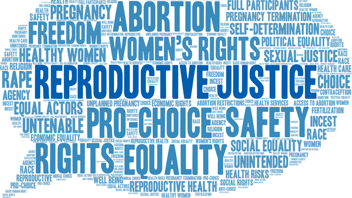 How Advocates of Reproductive Justice Stepped Into the Spotlight