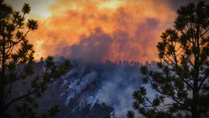 How to Address Wildfires as They Get Worse Giving Compass