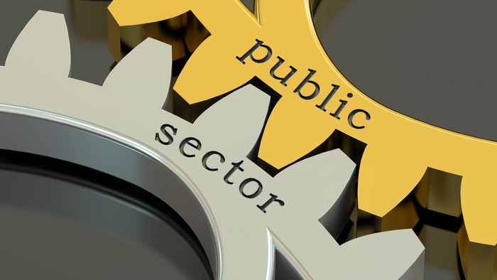 The Importance of the Public Sector in Addressing Social Issues
