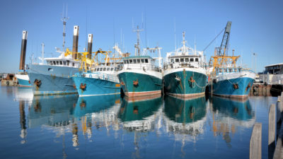 Climate Justice Means Protecting the Future of Fish Giving Compass