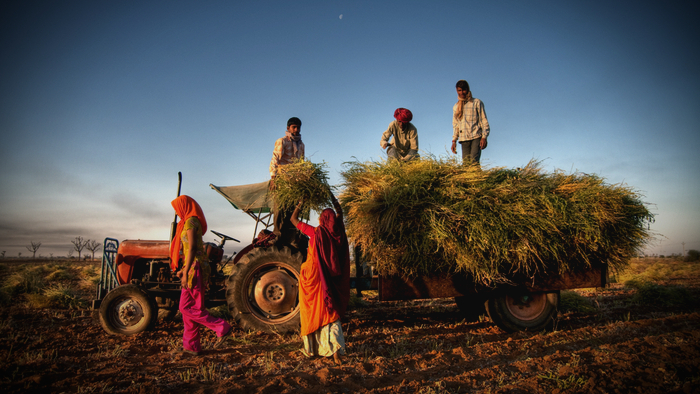 The Impact of COVID-19 for Rural India Giving Compass