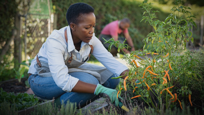 BIPOC Leaders in Food & Agriculture Urge Food System Funders to Commit to Equity Giving Compass