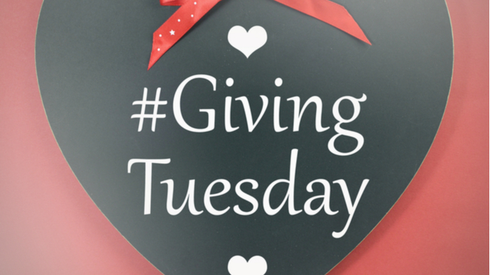 How to Effectively Use Your Donor Data on Giving Tuesday Giving Compass