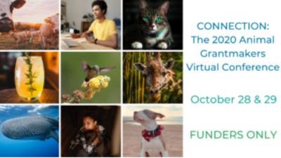 Animal Grantmakers Conference