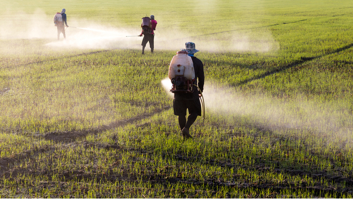 Student Activists Lead Grassroots Movement to Ban Synthetic Herbicides