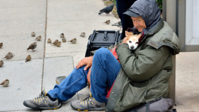 Keeping Companion Animals with Owners During Homelessness