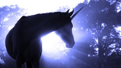 Venture Capital's Next Unicorn? Impact