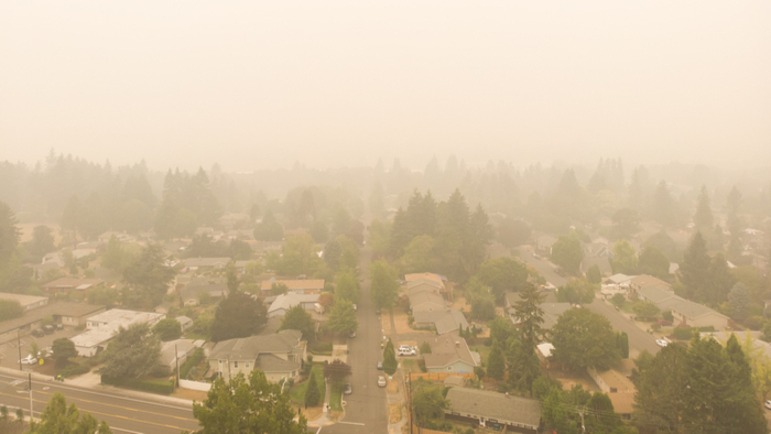 Breathing Wildfire Smoke Can Affect the Brain and Sperm, as Well as the Lungs Giving Compass