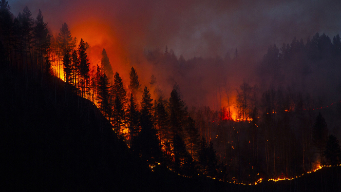 Moving Beyond America's War on Wildfire: Four Ways to Avoid Future Megafires Giving Compass